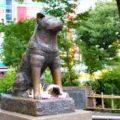 先入観は捨てた方がいい。渋谷の外国人に会ったら常識が破壊された話し。